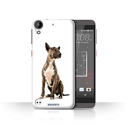 Hülle Für HTC Desire 630 H&/H&e Bull Terrier Design Transparent Ultra Dünn Klar Hart Schutz Handyhülle Hülle