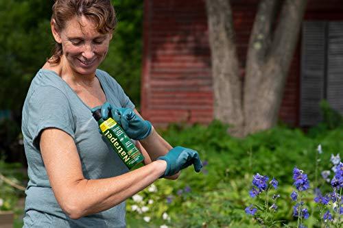 Natrapel 12-Hour Insect Repellent, 6 oz. Eco-Spray Picaridin Bug Spray – Family Insect Repellent for Mosquitoes, Ticks, & More, Black (0006-6878)