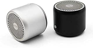 EWA Bluetooth Speaker With Carry Case Bass Radiator for Outdoors Home A106 Pro