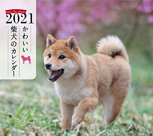 2021年 ミニ判カレンダー かわいい柴犬のカレンダー (誠文堂新光社カレンダー)