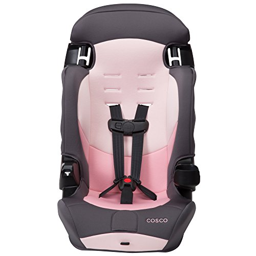 Cosco Finale DX 2-in-1 Booster Car Seat, Sweet Berry