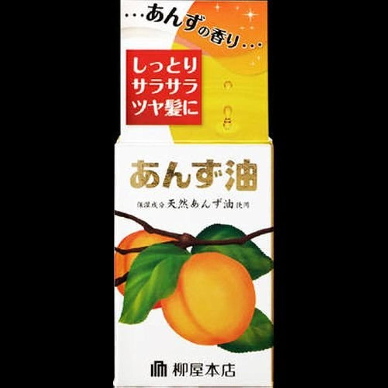 カウント正規化唇【まとめ買い】柳屋 あんず油<小> 30ml ×2セット