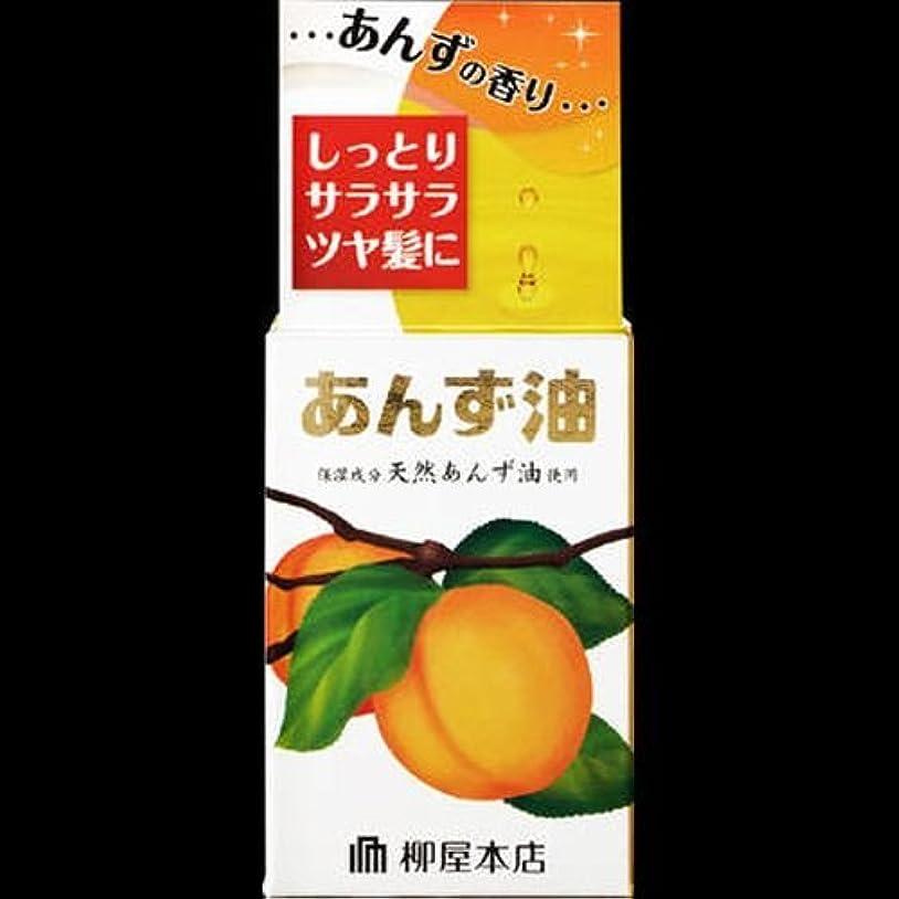 行政論争の的傀儡【まとめ買い】柳屋 あんず油<小> 30ml ×2セット