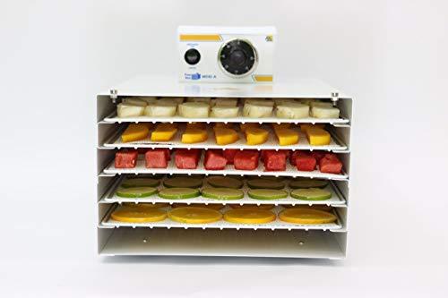 Desidratador de alimentos residencial Pratic Dryer 127 Volts Analógico M042-A