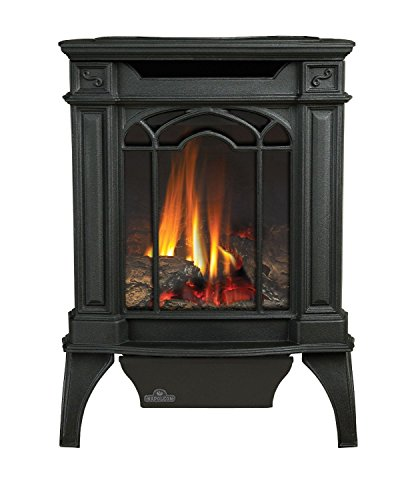 Napoleon GDS20N Fireplace, Arlington Natural Gas Compact Stove Direct Vent 20,000 BTU - Painted Black