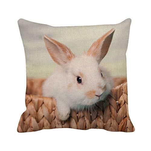 Funda de cojín cuadrada con diseño de conejo de Pascua suave decorativa para sofá, cama, silla, 45 cm x 45 cm