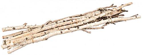 NaDeco Birkenzweige 1m im Bund mit 10 Stück Birkenzweig Birkenäste Birken Bündel Birken Zweige Birken AST Birkenstamm Birken Deko Äste Deko Holz Deko Birke Deko Äste
