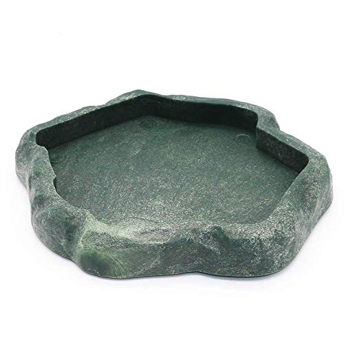 Reptile Water Bowl and Feeders