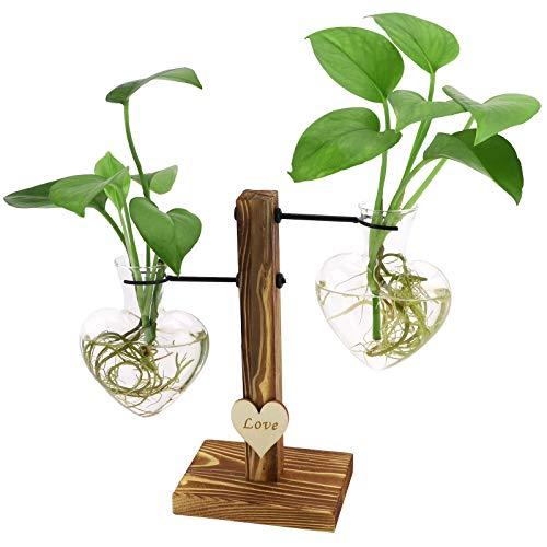 Terrario per piante in vetro con supporto in legno, creativo a forma di doppio cuore idroponico vaso trasparente con supporto in legno retrò, vaso da tavolo per casa, giardino, ufficio, decorazione