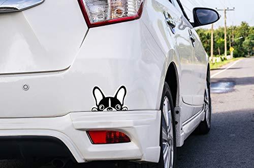 Oedim Pegatina coche Perro bulldog frances, 16x10cm