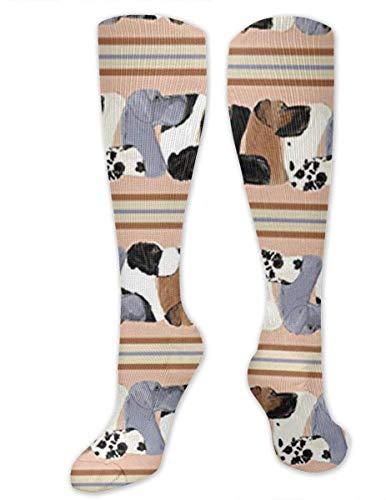 Calcetines de compresión Great Dane Stripe Dogs para hombres y mujeres, los mejores atletas graduados y médicos para hombres y mujeres, correr, vuelo, viajes