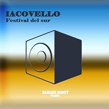 Festival Del Sur