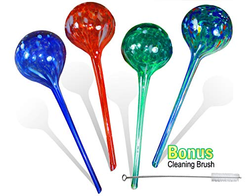 5 STAR SUPER DEALS Aqua Plant Watering Globes Large - 4pc Deluxe Set - Automatic Watering Bulbs