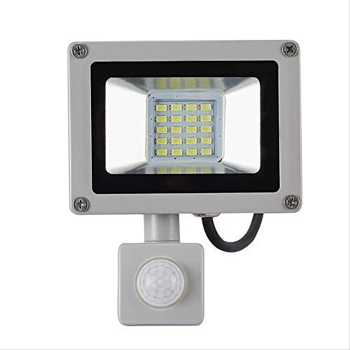 Proiettore orientabile a LED Pir Sensore 10w20w impermeabile Impermeabile Ip65 220v Proiettore Giardino Faretto Parete esterna 20W220V bianco freddo