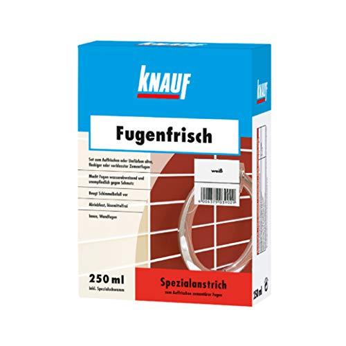 Knauf Fugen-Frisch zur Farb-Auffrischung alter Fugen – Spezialanstrich zum Auffrischen oder Färben verblasster Zement-Fugen: der Spezial-Reiniger beugt Schimmelpilz-Befall vor, Weiß, 250-ml