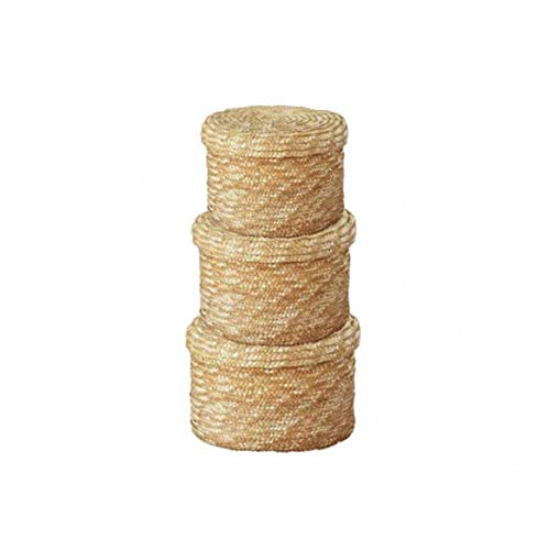 Conjunto de 3 Seagrass la cesta del almacenaje con tapa hecha a...