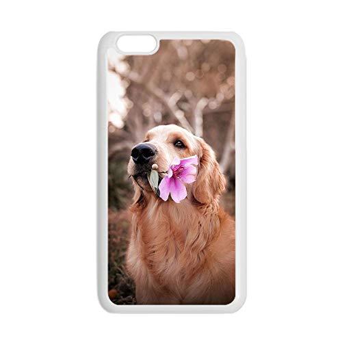 Generic Original compatible con Apple iPhone 7 y 8 para hombres, carcasa rígida para teléfono, impresión Golden Retriever 6