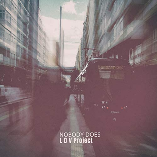 L D V Project