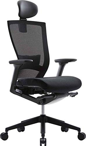 SIDIZ T50 Home Office Desk Chair : Advanced Mechanism for Your Posture, Ventilated Mesh Back, Adjustable Headrest, 2-Way Lumbar Support, 3-Way Armrests, Adjustable Seat Slide/Slope