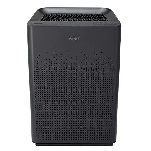 Winix AM80 True HEPA Air Purifier With Advanced Odor Control