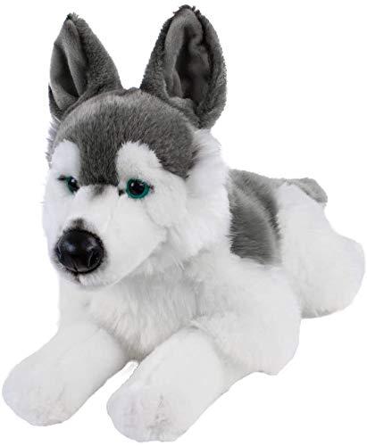 Teddys Rothenburg Kuscheltier Husky liegend 38 cm grau/weiß Plüschhund