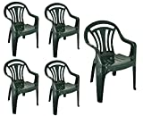 Bargains Hut 5 x <span class='highlight'>Plastic</span> Low Back <span class='highlight'>Garden</span> <span class='highlight'>Armchair</span> Lightweight <span class='highlight'>Indoor</span> <span class='highlight'>Outdoor</span> <span class='highlight'>Lawn</span> Camping Picnic <span class='highlight'>Patio</span> Chair Backrest <span class='highlight'>Stacking</span> Stackable Seats Green