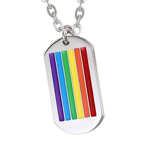 Cupimatch Herren Edelstahl Halskette, Homosexuell LGBT Gay & Lesbian Pride Dog Tag Anhänger Hochglanz Poliert mit 55cm Kette, Silber Regenbogen