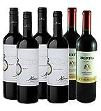 6er Südamerika Rotwein Einstiegspaket Argentinien Uruguay