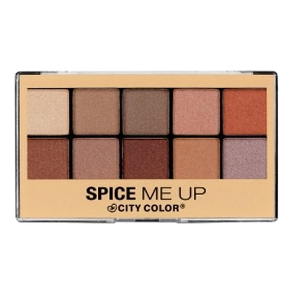 意気揚々百テザー(6 Pack) CITY COLOR Spice Me Up Palette - 10 Shades (並行輸入品)
