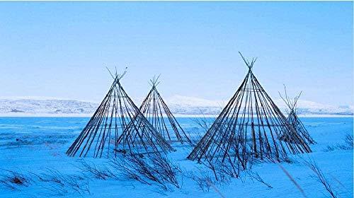NR Malen nach Zahlen Struktur des Sami Zeltes Ölgemälde Druck Wandkunst Home Decoration Leinwand Gemälde 40x50cm Rahmenlos
