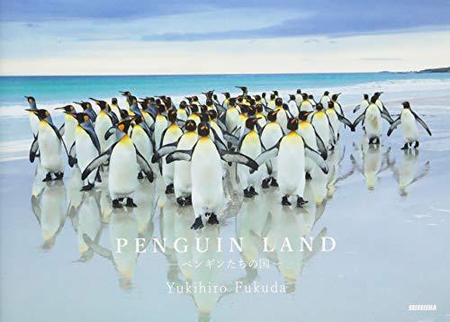 PENGUIN LAND ペンギンたちの国の詳細を見る