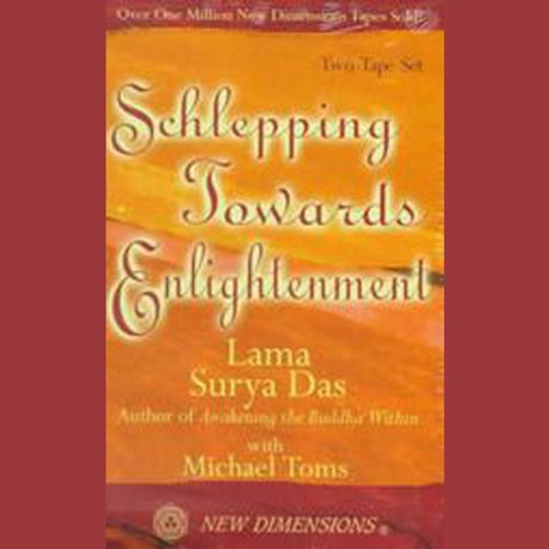 Schlepping Towards Enlightenment audiobook cover art
