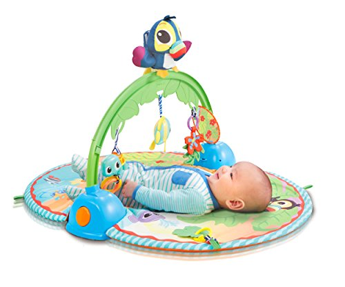Little Tikes Good Vibrations Deluxe Gym en plastique multicolore – Gymnase pour bébé (en plastique, multicolore, intérieur, ce, AA, 77 cm)