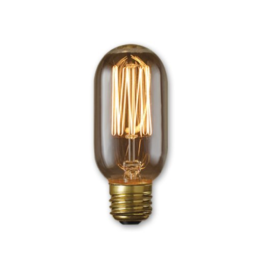 PureLume LED Edison T14 Squirrel Vintage Lamp 40W E27 220V