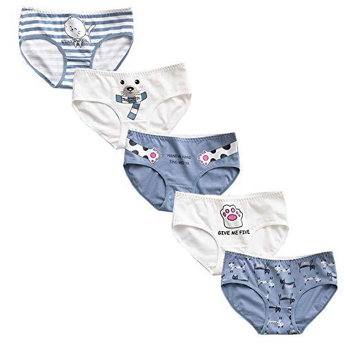 RosaObsta Ropa Interior Algodón Suave Confort para Niñas Bragas de Estiramiento Calzoncillos Braguitas Hipster Bikini Lindo Gato 10-13 años