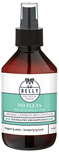 Flohmittel Spray für Hunde von Belly No Fleas 250ml I Zeckenschutz für Hunde & Welpen I Natürliches & Organisches Flohspray I Nachhaltige Alternative zu Zeckenhalsband & Insektenspray