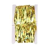 Toporchid 1Mx2Mライトコラムレーザーレインタッセルフリンジカーテン背景壁の装飾休日用パーティー結婚式誕生日(ゴールド)