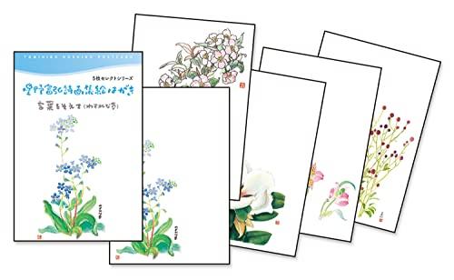 星野富弘 絵はがき 5枚セレクトシリーズ 言葉を添えて わすれな草 No.1264