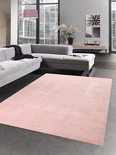 CARPETIA Modern Tapis carpette du Salon monocouche uni Rose Größe 120 cm Rund