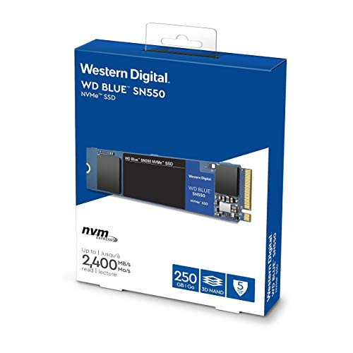 Western Digital Blue SN550 M.2