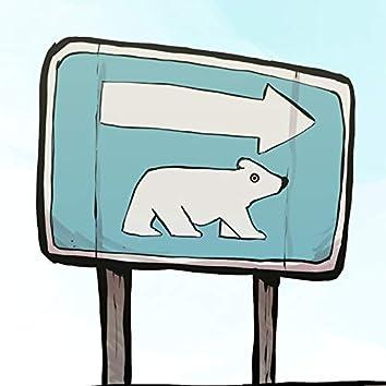 Eisbär 2021
