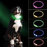 LED Hundehalsband Licht, USB wiederaufladbare, leuchtende Haustier Hundehalsband für die Nacht Sicherheit, Mode Leuchten Kragen für kleine, mittelgroße Hunde Grün