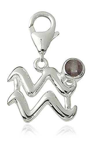 Charm hanger sterrenbeeld waterman 15mm, 925 sterling zilver met fluoriet edelsteen grijs, karabijnhaak voor armband ketting