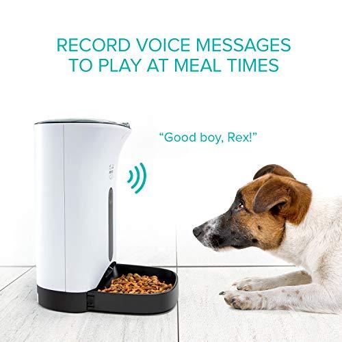 Arf Pets Dispensador automático de alimento para mascotas, para perros, gatos y animales pequeños – Cuenta con alarmas de distribución, control de porciones y grabación de voz – Temporizador programable hasta 4 comidas al día
