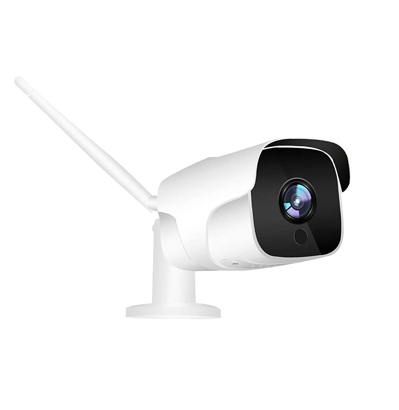 喜び過去群集夜間視界の動き検出の秘密の保証が付いている屋外のホームセキュリティーのカメラの無線電信システム1080p Hdのポータブル