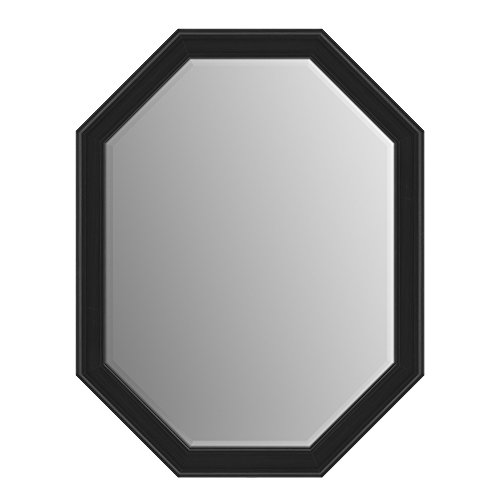 Delta Wall Mount 26 in. x 34 in. Medium (M2) Octagonal Framed Flush Mounting Bathroom Mirror in Matte Black with TRUClarity Deluxe Glass
