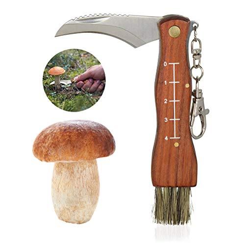 Sarplle Llavero con Cuchillo de Seta Recoger Setas con Pincel y mosquetón