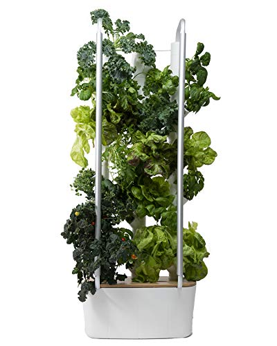 Gardyn Home Indoor Smart Garden - WiFi Integrated Vertical Gardening Kit with AI-Based App - 30 Plant Capacity Automatic Hydroponic Growing System