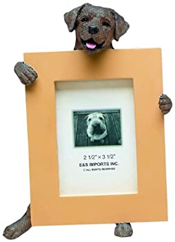 Chocolate Lab Picture Frame Holds Your Favorite 2.5 by 3.5 Inch Photo Hand Painted Realistic Looking Chocolate Lab Stands 6 Inches Tall Holding Beautifully Crafted Frame Unique and Special Chocolate Lab Gifts for Chocolate Lab Owners