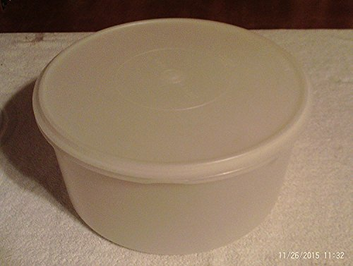 Tupperware Carry All Canister Sheer